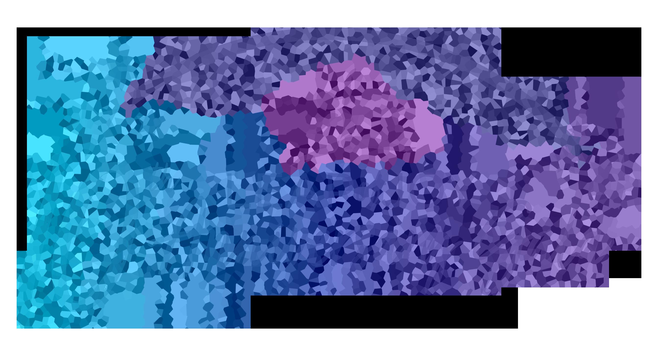 Leap of Joy 10th Anniversary Gala